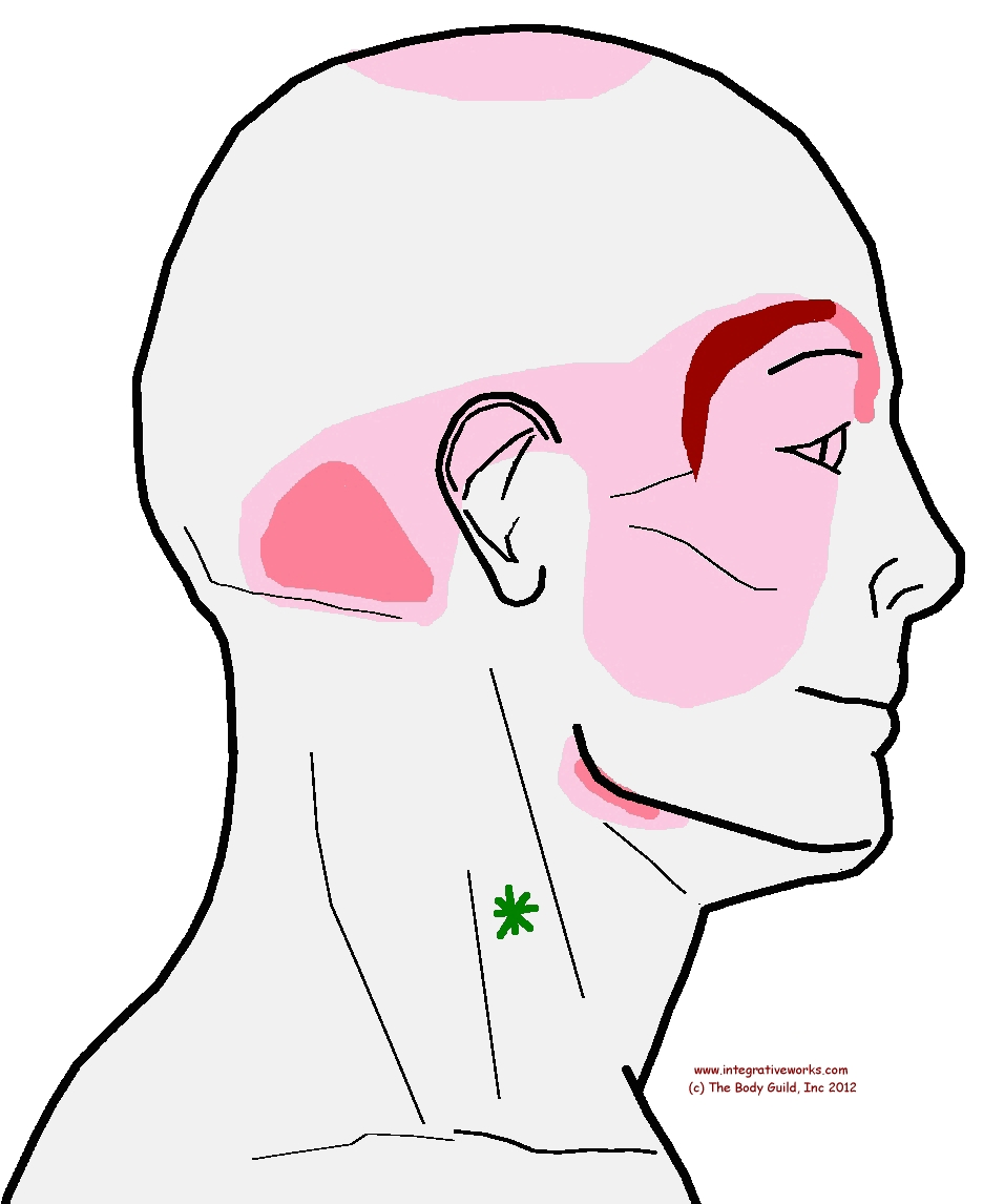 Stuffy Ears and Sinuses: The Sinus-Ear Connection